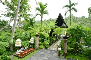 バリ島ウブドウェディング・挙式特集