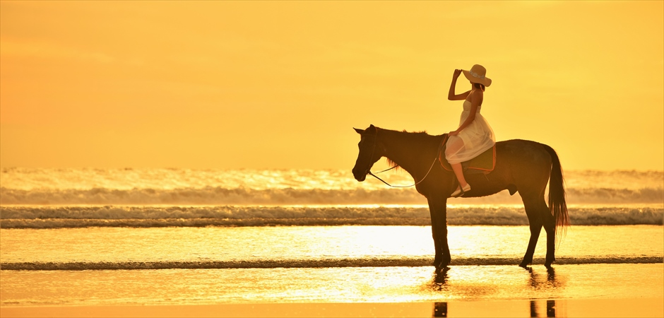 Beach Horse Riding<br>Wedding Photo Tour