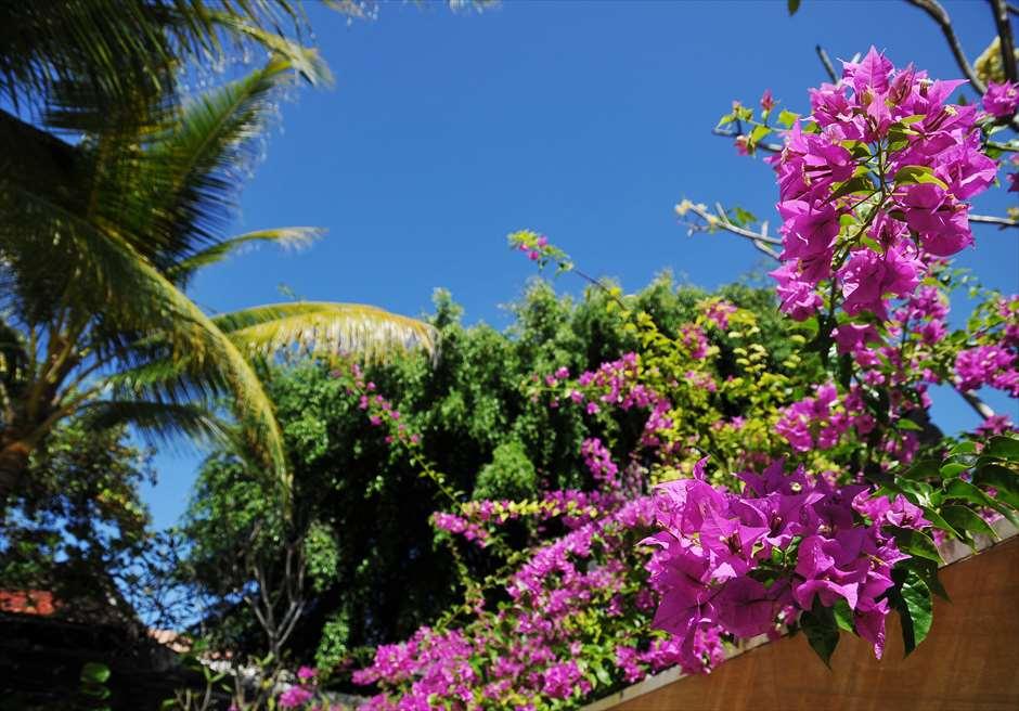 ザ・ムリア・バリ<br /> ハーモニー・チャペル・ウェディング<br /> 花々が咲き乱れる美しいガーデン