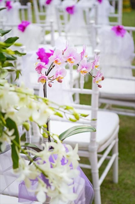 プリ・ウランダリ・ブティック・リゾート<br /> スカイ・ガーデン・ウェディング<br /> セレモニーチェア装飾
