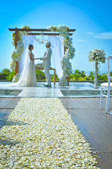 Ocean Wedding ~オーシャン・ウェディング