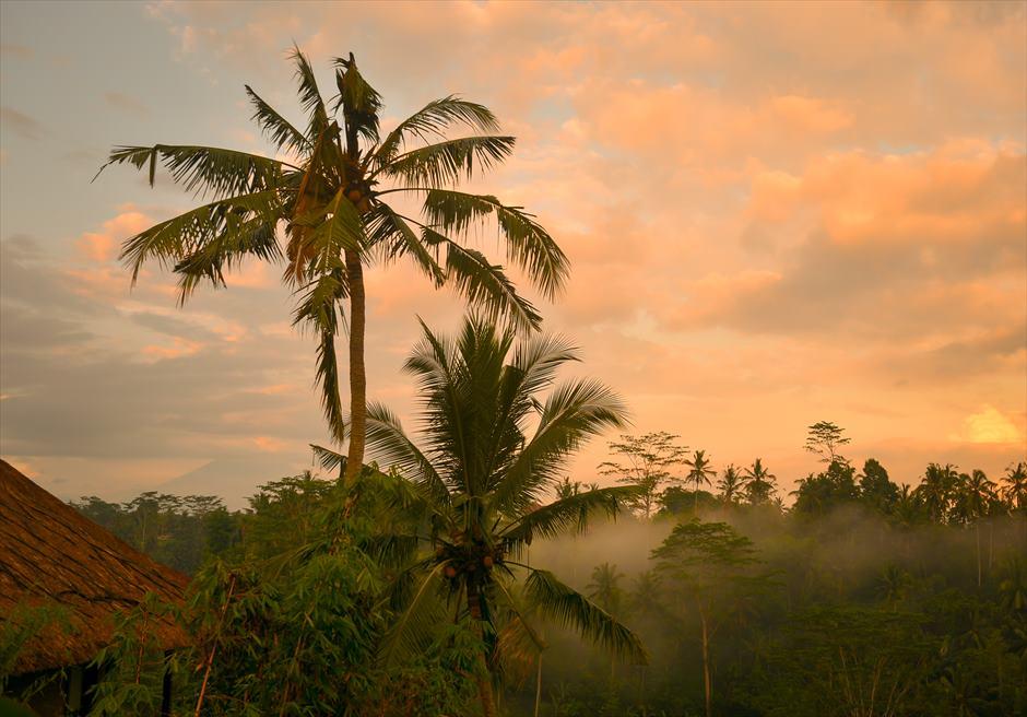 ジャンナタ・リゾート・ウブド・バリジャングルの夕暮れ