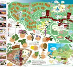 Resort-Map-2