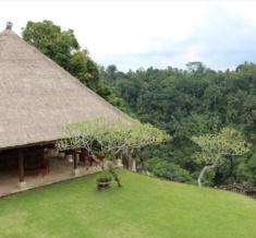 Barong Bar View