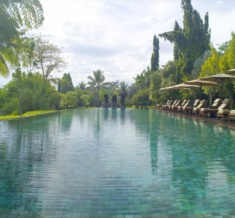 Chedi Club Ubud Bali_Swimming Pool 01_V-1
