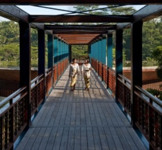 Wooden Bridge On Arrival