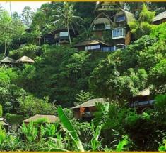 Kupu-Kupu-Barong-Resort-View