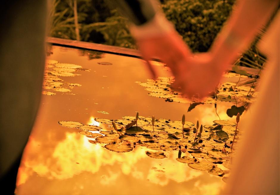 バリ島ウェディング・フォト【ウブド】/ フォーシーズンズ・リゾート・サヤン/ サンセットに色づくロータス・ポンド